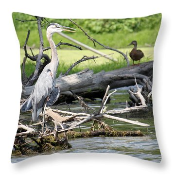 Throw Pillow featuring the photograph Heron And Mallard by Debbie Hart