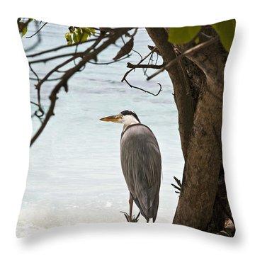 Heron Throw Pillow by Jane Rix