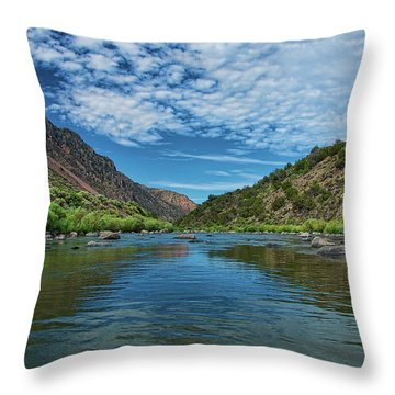Throw Pillow featuring the photograph Herring Bone View by Britt Runyon