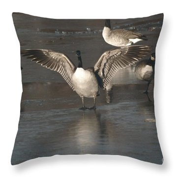 Throw Pillow featuring the photograph Hey Over Here by Mark McReynolds