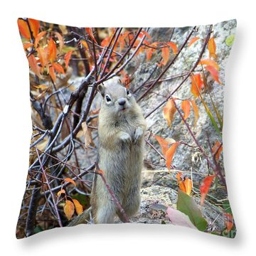 Hey There Throw Pillow by Dorrene BrownButterfield