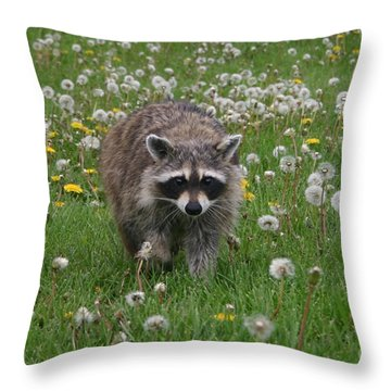 Hey What You Got There Throw Pillow