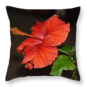 Hibiscus Bloom Throw Pillow