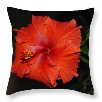 Hibiscus Close Up Throw Pillow