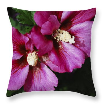 Throw Pillow featuring the photograph Hibiscus Flowers by Janice Adomeit