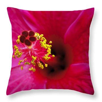 Hibiscus Macro Throw Pillow by Joe Carini - Printscapes