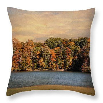 Hidden Cove Throw Pillow by Jai Johnson