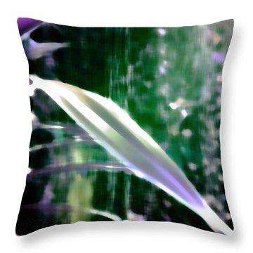 Hidden Paradise Throw Pillow by Miss Dawn