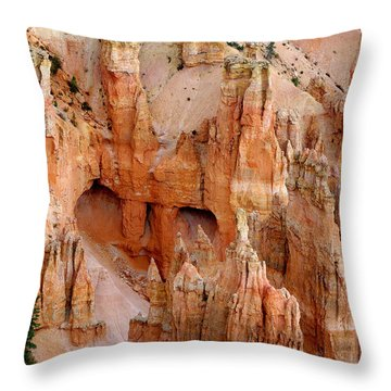 Throw Pillow featuring the photograph Hideaway  by Vicki Pelham