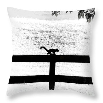 Hiding In The Shadows Throw Pillow by Cris Hayes