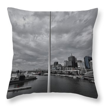 High Flying Throw Pillow by Douglas Barnard