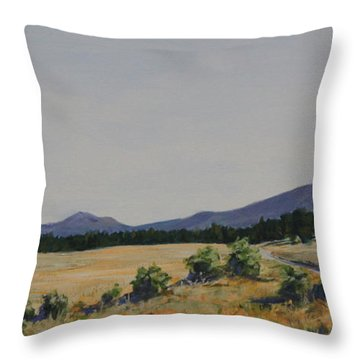 High Land Road Throw Pillow by Adam Smith