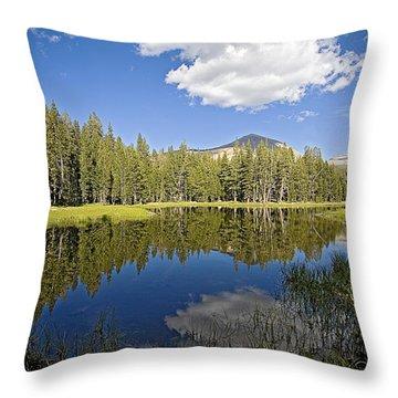 High Sierras Lake Throw Pillow by Bonnie Bruno