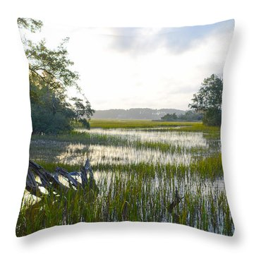 Throw Pillow featuring the photograph High Tide by Margaret Palmer