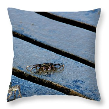 Highway That Way Throw Pillow