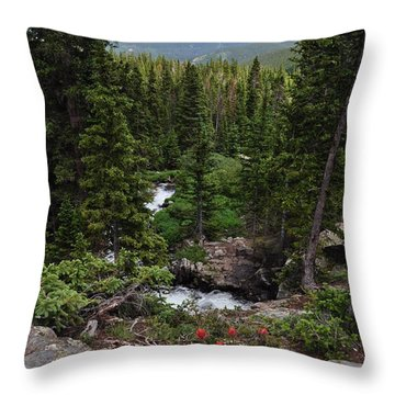 Hiking In Colorado Throw Pillow
