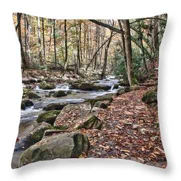 Hiking Trail To Cascade Falls Throw Pillow