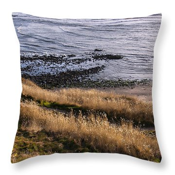 Hill Side View Throw Pillow by Svetlana Sewell