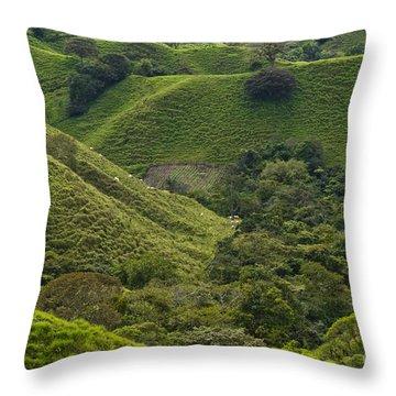 Hills Of Caizan 2 Throw Pillow by Heiko Koehrer-Wagner