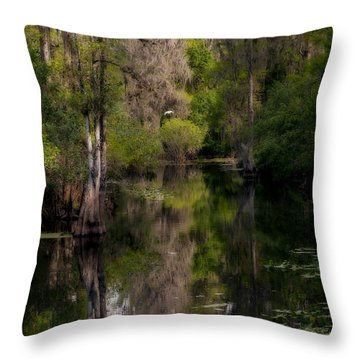 Hillsborough River In March Throw Pillow by Steven Sparks