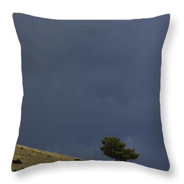 Throw Pillow featuring the photograph Hillside Tree by J L Woody Wooden