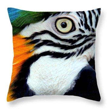 His Watchful Eye Throw Pillow by Karen Wiles