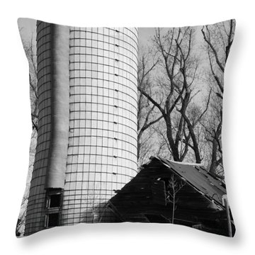 Throw Pillow featuring the photograph Hold Me Up by Colleen Coccia