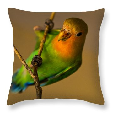 Holding Tight Throw Pillow by Syed Aqueel