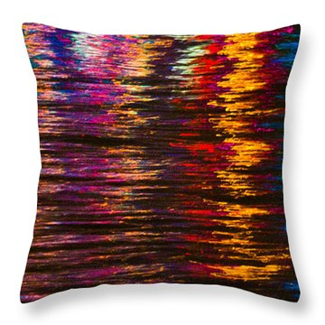 Holiday Reflections Throw Pillow