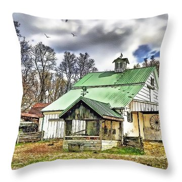 Holmes County Farm Throw Pillow by Tom Schmidt