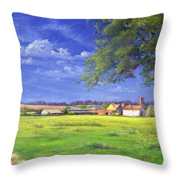 Home Field Throw Pillow by Anthony Rule