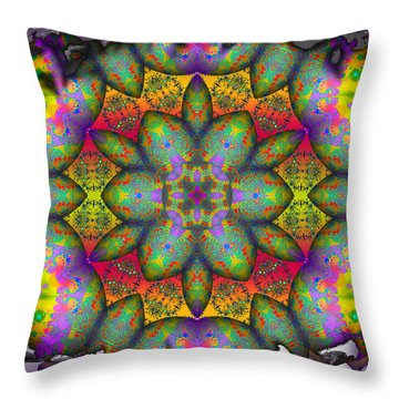 Home Sweet Home Throw Pillow by Robert Orinski