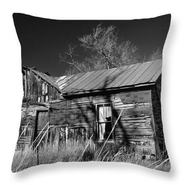 Throw Pillow featuring the photograph Homestead by Ron Cline