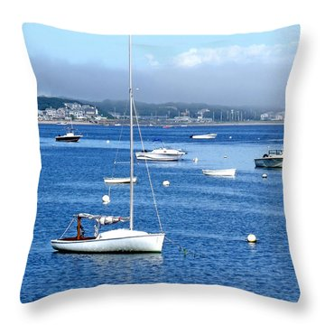 Homeward Bound Throw Pillow by Marilyn Holkham