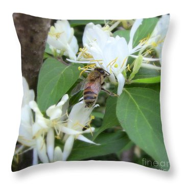 Throw Pillow featuring the photograph Honeybee Collecting Pollen by Renee Trenholm