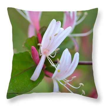 Throw Pillow featuring the photograph Honeysuckle by JD Grimes