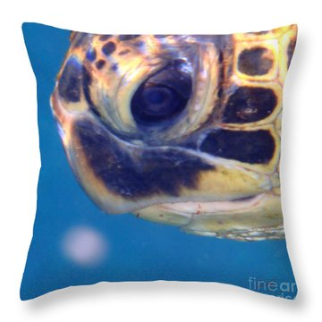 Throw Pillow featuring the photograph Honu Ho'okalakupua by Suzette Kallen