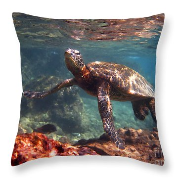 Honu In The Shallows Throw Pillow