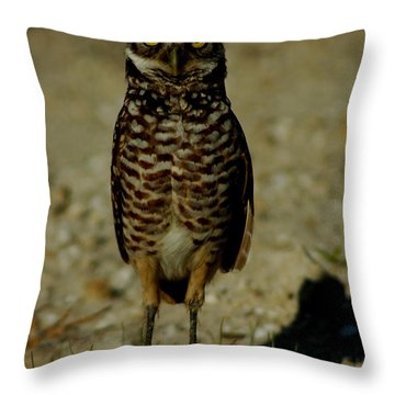 Hoo Are You? Throw Pillow