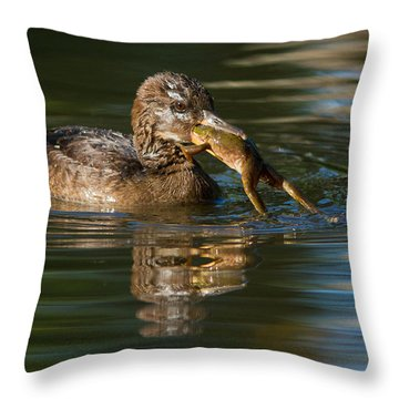 Hooded Merganser And Bullfrog Throw Pillow by Mircea Costina Photography