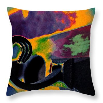 Hooked Throw Pillow by Molly McPherson