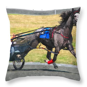 Throw Pillow featuring the photograph Hooray For The Gray by Alice Gipson