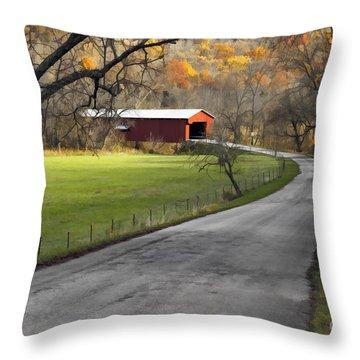 Hoosier Autumn - D007843a Throw Pillow by Daniel Dempster