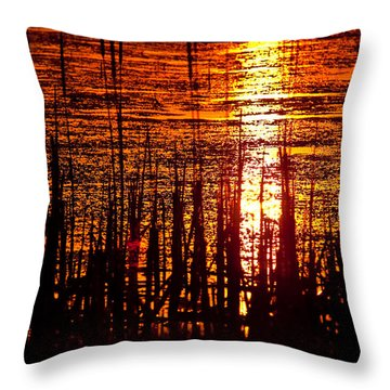 Horicon Marsh Sunset Wisconsin Throw Pillow by Steve Gadomski