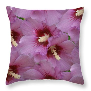 Horn Of Plenty Throw Pillow