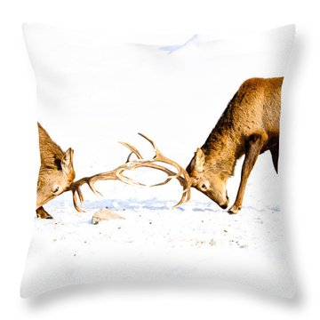 Horns A Plenty Throw Pillow by Cheryl Baxter