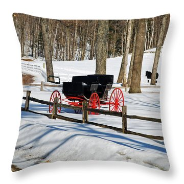 Throw Pillow featuring the photograph Horse And Buggy - No Work Today by Janice Adomeit