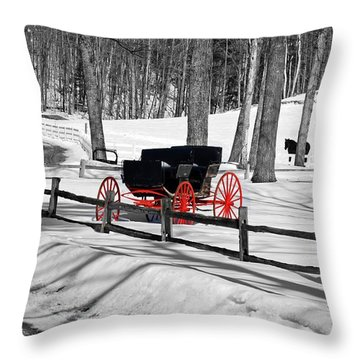 Throw Pillow featuring the photograph Horse And Buggy - No Work Today No. 2 by Janice Adomeit