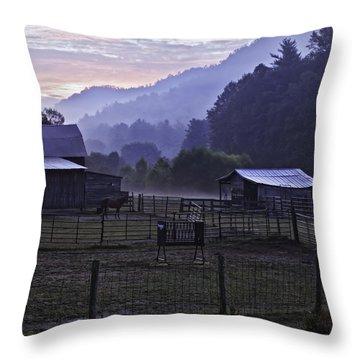 Horse At Home - North Carolina Farm Scene Throw Pillow by Rob Travis