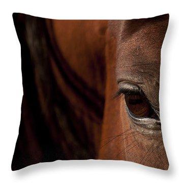 Horse Eye Throw Pillow by Michael Mogensen
